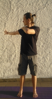 yoga-em-casa-aula-gratis-particular-online-gilberto
