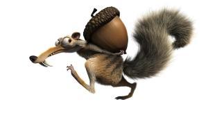 Os esquilos acumulam sementes para o inverno-medo-sociedade-yoga