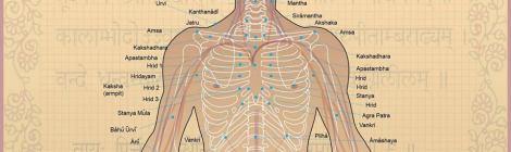 Automassagem-marmas-aromaterapia-cura-prânica