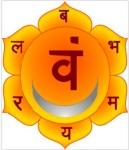 swadhisthana-chakra-sexual-yoga-ativar