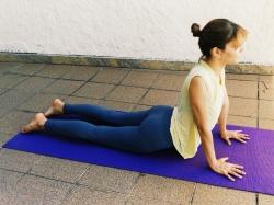 urdhva-mukha-shvanasana-yoga-para-tpm-iniciantes
