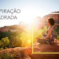Conheça os benefícios e aprenda a fazer o Samavritti Pranayama, a Respiração quadrada: Uma Iniciação às retenções