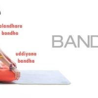 Fundamentos da prática | O que são os bandhas? Como ativá-los?