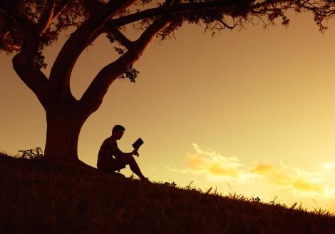 Livros de Yoga para iniciantes 3 obras essenciais para quem está começando