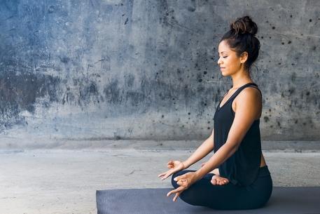 Pratica de Yoga e Meditacao Um elo quase perdido