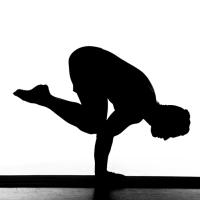 Fundamentos do Yoga: Os 7 Pilares do Equilíbrio Físico