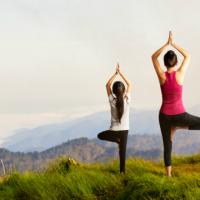 Conheça os ajustes e os benefícios de Vrkshasana, a Postura da Árvore