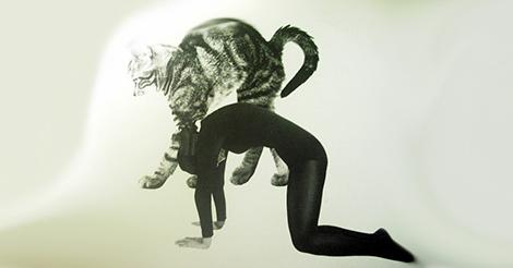 Por que fazer Marjaryasana, o espreguiçamento do gato