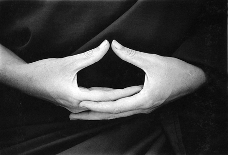 Desvendando as Mudras, os gestos do Yoga