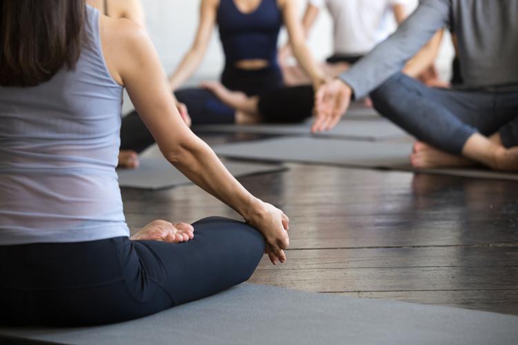 Yoga e Meditação   yoga em casa   para conhecer e começar a praticar onde  estiver
